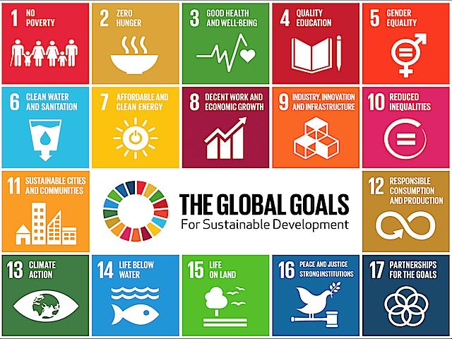 Immagine ufficiale degli Obiettivi di Sviluppo Sostenibile